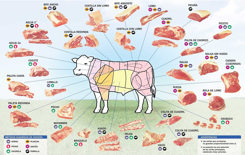 cortes-vaca
